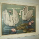 Framed Art, Two Swans