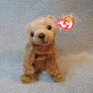 Pecan the Bear TY Beanie Baby Retired MWMT