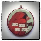 HOPE MUST EVER SPRING VINTAGE CARDINAL BIRD COLLAGE PENDANT