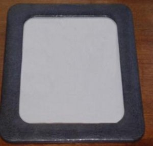 Picture Frame for 8 X10 picture Faux Lizard Beautiful!