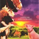 BABE A little pig goes a long way. VHS Clam Case
