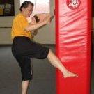 Iron Shin Training Course