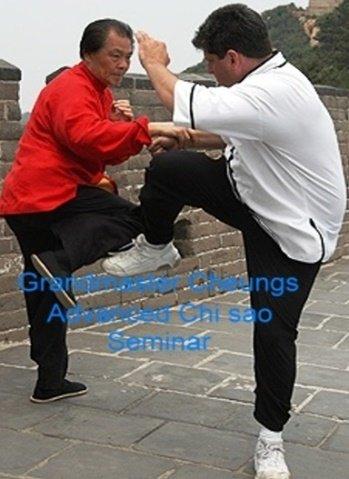 Grandmaster Cheung's Advanced Chi Sao Seminar