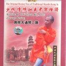 Shaolin NanYuan 2