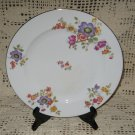 Springer & Co Epiag Czechoslovakia Dinner Plate Multi-color Floral Gold Trim