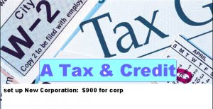 Incorporation-Corp. Texas reduced $699/account