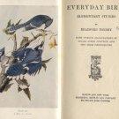 Everyday Bird Watching AUDUBON WATCHING GUIDE Bradford Torrey 1901 HB