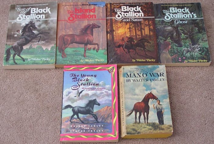 6 Vintage Book Set BLACK STALLION Walter Farley ISLAND Young GHOST Satan MAN O'WAR
