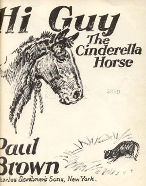 HI GUY CINDERELLA HORSE Madison Square Garden SHOW JUMPING Equestrian Nationals PAUL BROWN HB