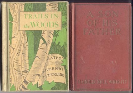 TRAILS IN THE WOODS Skunk GRANDFATHER Basic Reader DICK AND JANE Book