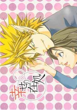 [HM077] Eyeshield 21 Doujinshi: Shiawase no Akira (HiruMamo)