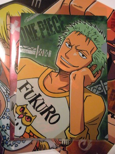 One Piece File Folder: Zoro