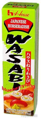 Japan House Japanese Horseradish WASABI in tube food paste sauce seasoning 43g
