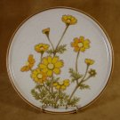 MIKASA NATURAL BEAUTY SOUTHERN SUN DINNER PLATE (S)
