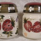 ONEIDA KITCHEN STRAWBERRY PLAID JUMBO SALT & PEPPER SET