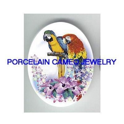 2 MACAW BIRD HIBISCUS * UNSET CAMEO PORCELAIN CABOCHON