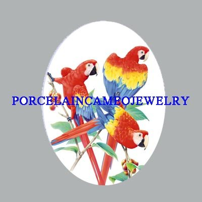 3 SCARLET MACAW PARROT BIRD UNSET CAMEO PORCELAIN CABO