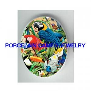 2 MACAW PARROT COCKATOO BIRD COLLAGE CAMEO PORCELAIN