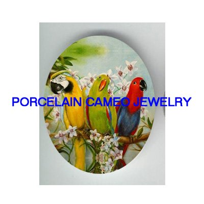 3 MACAW PARROT BIRD COLLAGE WITH ORCHID FLOWER * UNSET CAMEO PORCELAIN CABOCHON