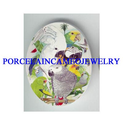 COCKATOO PARROT AFRICAN GREY BIRD COLLAGE* UNSET CAMEO PORCELAIN CABOCHON