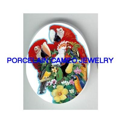 2 MACAW PARROT COCKATOO BIRD COLLAGE* UNSET CAMEO PORCELAIN CABOCHON