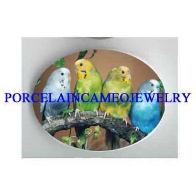 4 PARAKEET BUDGIE BIRD COLLAGE CAMEO PORCELAIN CAB