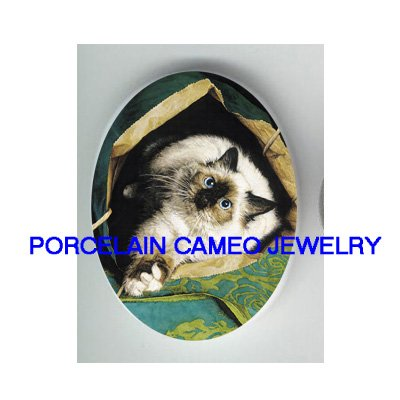 PLAYFUL SIAMESE CAT IN THE PAPER BAG* UNSET CAMEO PORCELAIN CAB