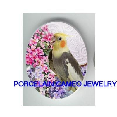 COCKATOO BIRD AFRICAN VIOLET CAMEO PORCELAIN CAB 18X25