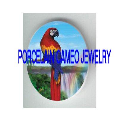 PARROT BIRD RAINBOW WATERFALL PORCELAIN CAMEO 18X25MM