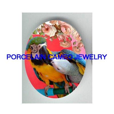 BLUE GOLD PARROT KISS AFRICAN GREY PORCELAIN CAMEO 1825