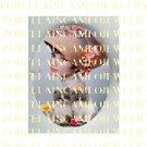 AUDREY HEPBURN ROSE WITH GREY KITTY CAT * UNSET PORCELAIN CAMEO CAB
