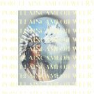 NATIVE AMERICAN INDIAN CHIEF WHITE WOLF * UNSET PORCELAIN CAMEO CAB