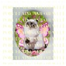 HIMALAYAN BUTTERFLY FAIRY CAT ROSE  * UNSET PORCELAIN CAMEO CAB