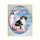 BLACK WHITE FAIRY CAT BUTTERFLY MOON CAMEO PORCELAIN CAB