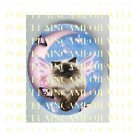 HIMALAYAN BUTTERFLY FAIRY CAT BUBBLE MOON PORCELAIN CAMEO CAB
