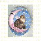 MAINE COON CAT BUTTERFLY FAIRY CAT BUBBLE MOON PORCELAIN CAMEO CAB