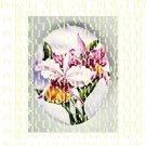 PURPLE WHITE ORCHID FLOWER* UNSET PORCELAIN CAMEO CAB