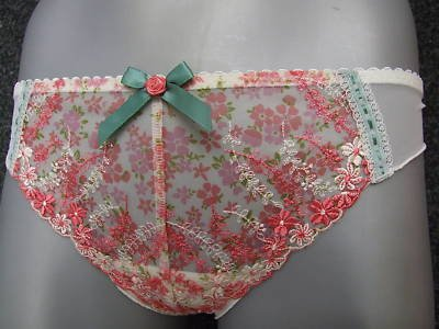 size 14 ex m&s cream pink embroidery brief knickers BN