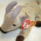 Ty Beanie Baby Collection Goatee Goat (HC13)