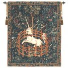 Unicorn In Captivity II With Border B - H 68 x W 52
