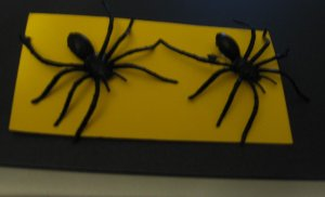 Black Spider Earrings Clip Halloween Club School Scary