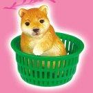 Re-ment Dollhouse  Miniature Animal Figure Akita Dog Puppy Basket ** Free Shipping