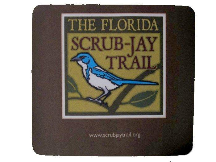 Scrub-Jay Mouse Pad