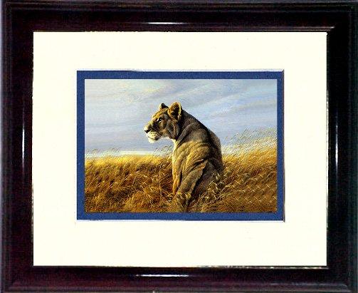 Bateman's lioness #A463