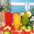 eBook Blender Frozen Drinks Smoothie Recipes