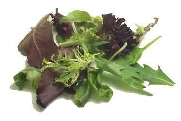 Diabetic Low Fat Low Sugar Soup & Salad Recipes eBook