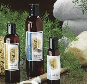 Scented Bath Body Shower Gel Recipes eBook