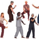 eBook Tai Chi Methods Benefits Philosophy