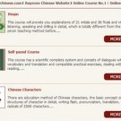 Raychinese Online Basic Chinese Course(Pinyin, Chinese Characters, Self-paced Course)