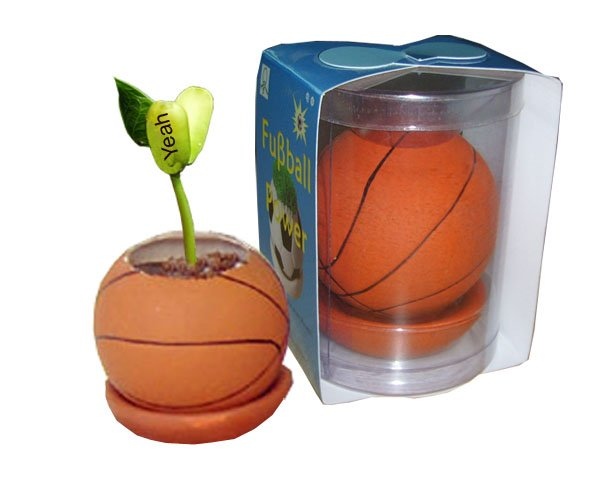 Basketball plants;Ceramic basketball; Toy basketball(GF-BP-B)